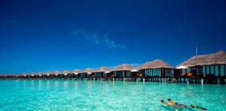 Praca i wakacje na Malediwach